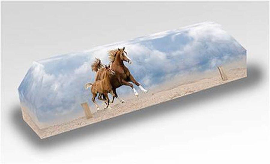 cercueil-en-carton-cheval-poulain