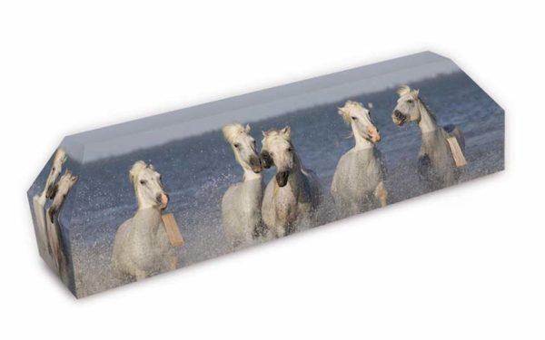 cercueil-en-carton-chevaux