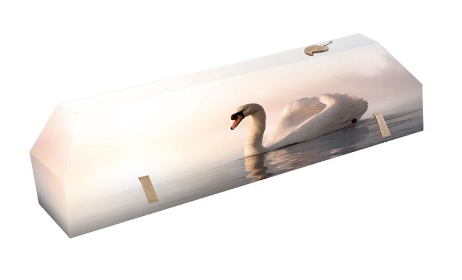 cercueil-en-carton-cygne