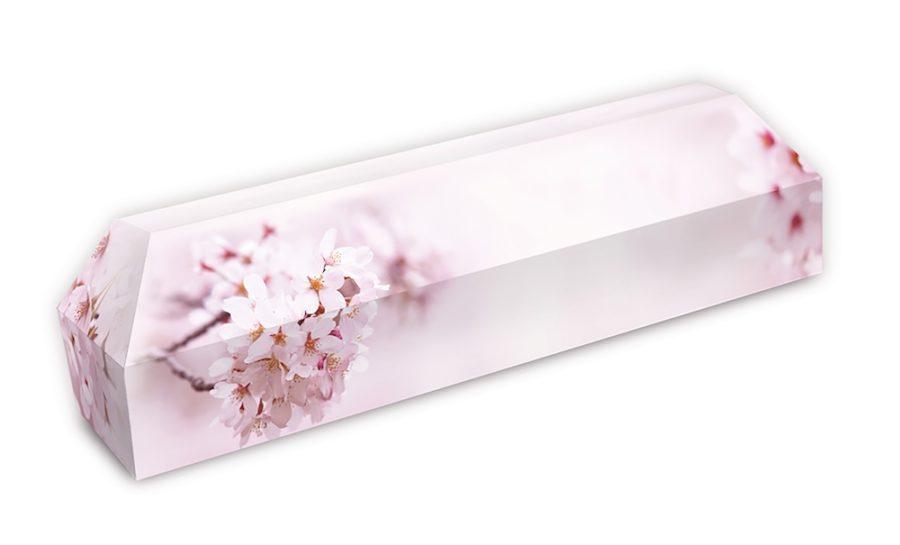 cercueil-en-carton-fleurs-de-ceriser-rose
