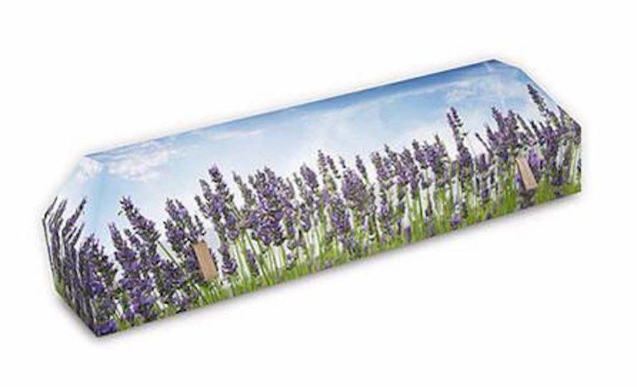 cercueil-en-carton-fleurs-de-lavande