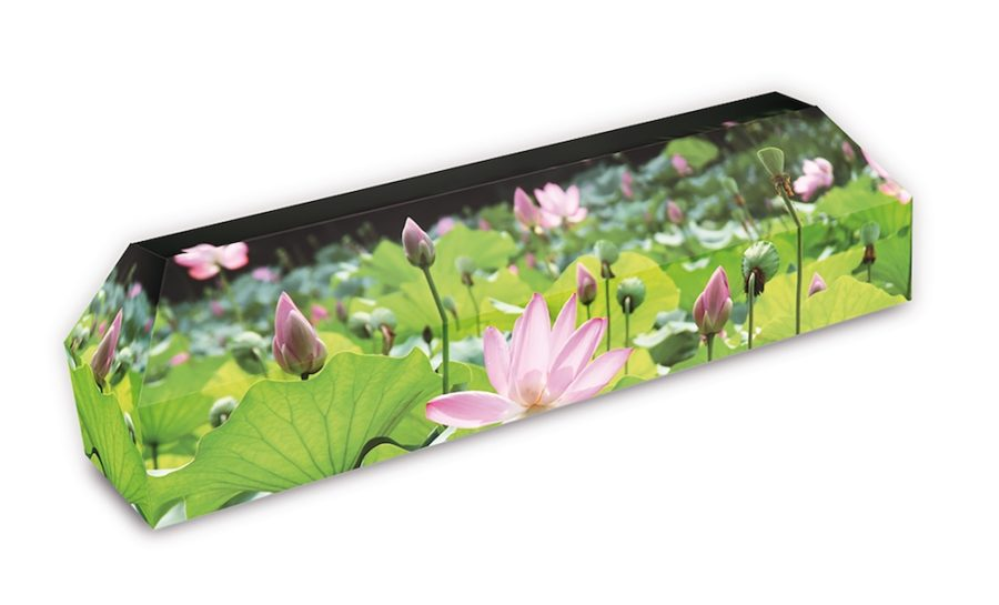 cercueil-en-carton-fleurs-de-lotus