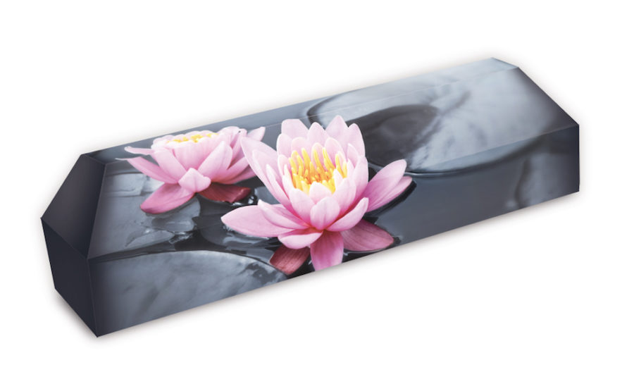 cercueil-en-carton-fleurs-de-lotus-rose