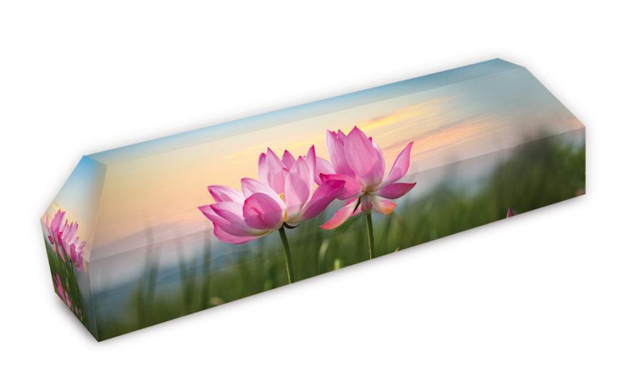 cercueil-en-carton-fleurs-lotus